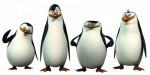 pinguine-aus-madagascar-171850